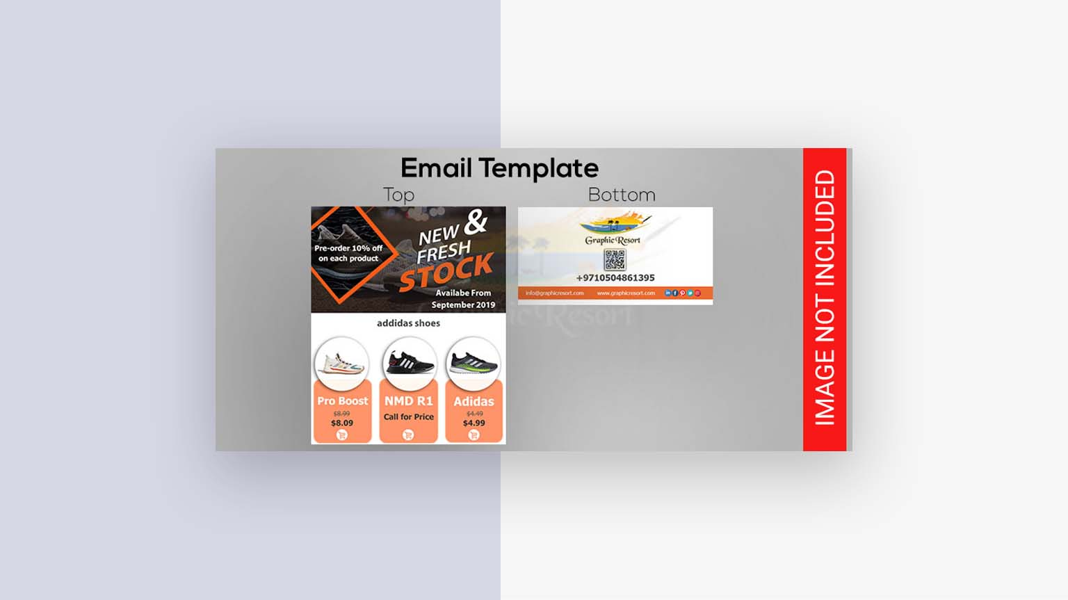 fresh stock email template